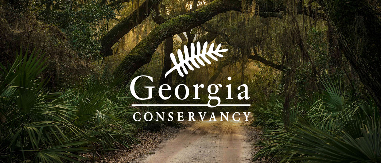 The Georgia Conservancy